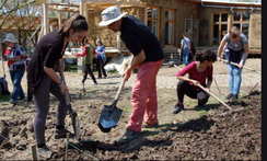 Youth digging ground.png