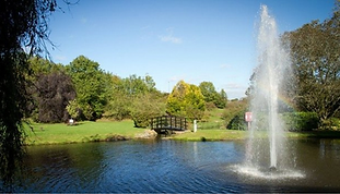 Hol Inn Filton - lake in grounds.png