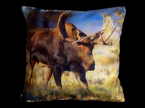 Pillowcase 4010