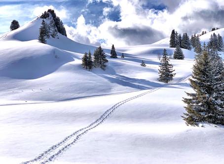 Les Monts Chevreuils en raquettes
