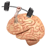 brain training.png