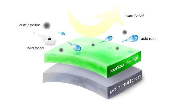 Kenzo-graph.jpg