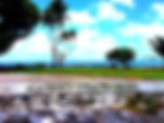 IMG_0752-1024x768.jpg