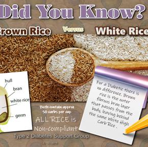 Brown versus White Rice.png