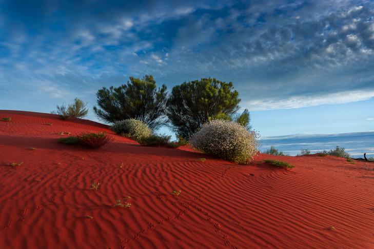 Red Sand Eden