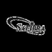 Safibra_CB-web.png