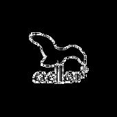 Adler_CB-web.png