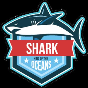 AN6-9090 SHARK