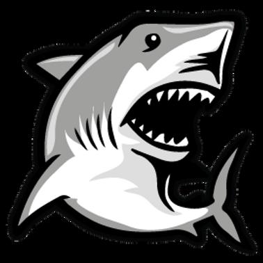 AN7-9090 SHARK