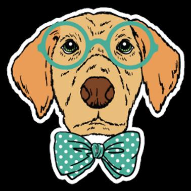 ANDG24-9090-SMART-DOG