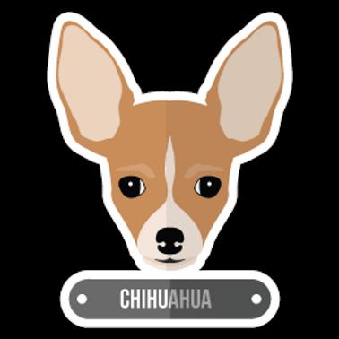ANDG8-10080-CHIHUAHUA