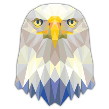AN10-10080 TRIANGLE EAGLE