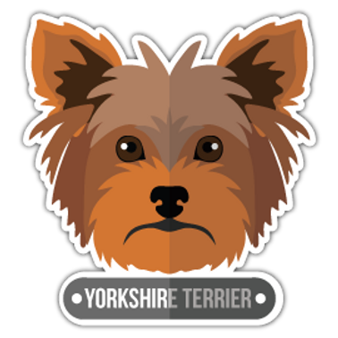 ANDG27-9085-YORKSHIRE-TERRIER