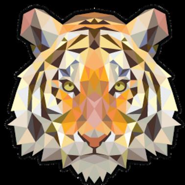 AN9-9090 TIGER