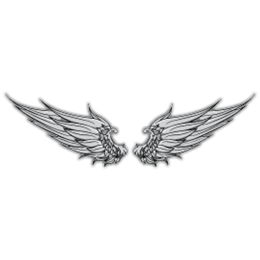 RFHLM46-360105-ANGEL-WINGS