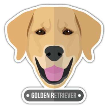 ANDG16-9090-GOLDEN-RETRIEVER