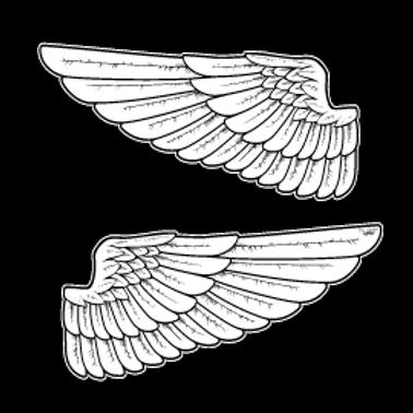 RFHLM48-21555-WINGS-XL