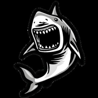 AN8-10575 SHARK