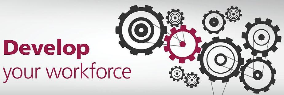 develop-your-workforce-cogs_edited.jpg