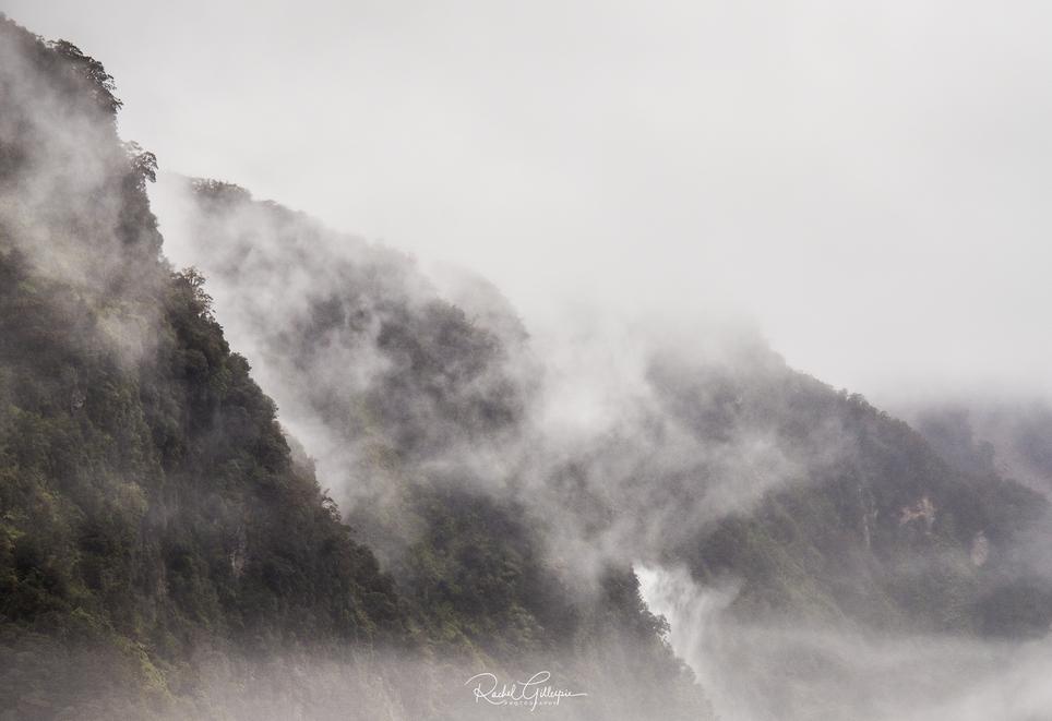 Doubtful Sound Trip Misty Coves