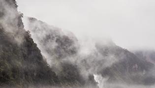 Doubtful Sound Misty Coves