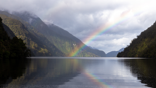 Dusky Sound Rainbow Pot of Gold