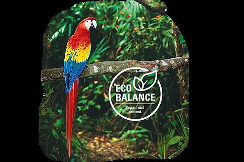 eco_balance_0.png
