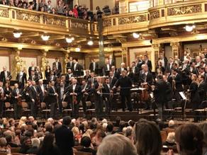 Wiener Philharmoniker Orchester