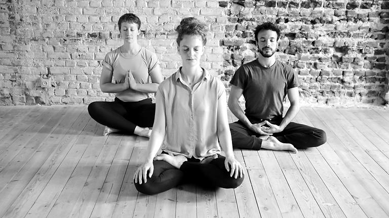 Vijñāna Yoga Morning Retreat (2)