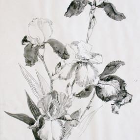 flowers #6