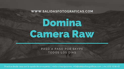 Clases online camera raw.png