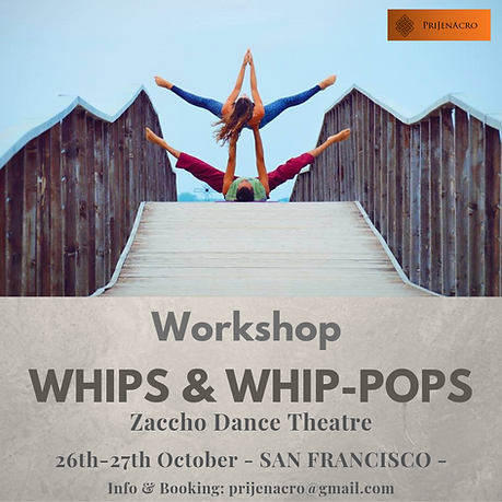 WHIPS & WHIP-POPS.png