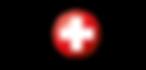 Work Safe logo (1).png