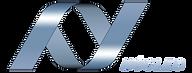Logo Nucleo Ok.png
