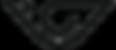 Logo Visionários