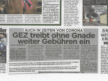 Bild: Deutschlands größte Tageszeitung schaut heimlich mein Corona-GEZ-Video