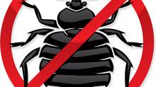 İstanbul Böcek İlaçlama Hizmeti