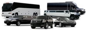 Luxury limos fleet