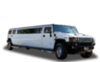 white-hummer copy.png