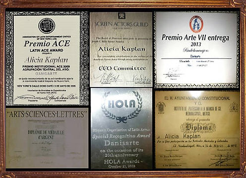Alicia Kaplan Awards