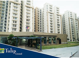 Tulip Grand | tulip-grand-apartments-in-sonipat