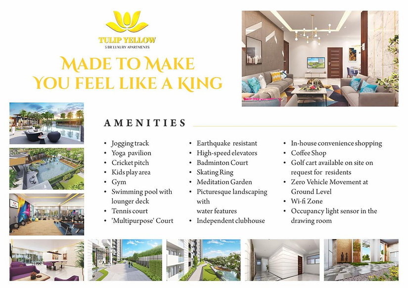 Tulip Yellow Amenities.jpg
