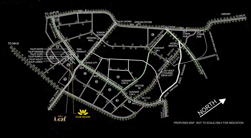 tulip yellow location map.png