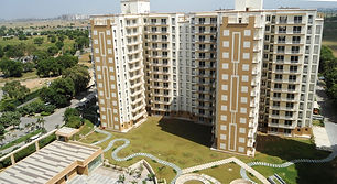 tulip-ace-housing-project-gurgaon .jpg