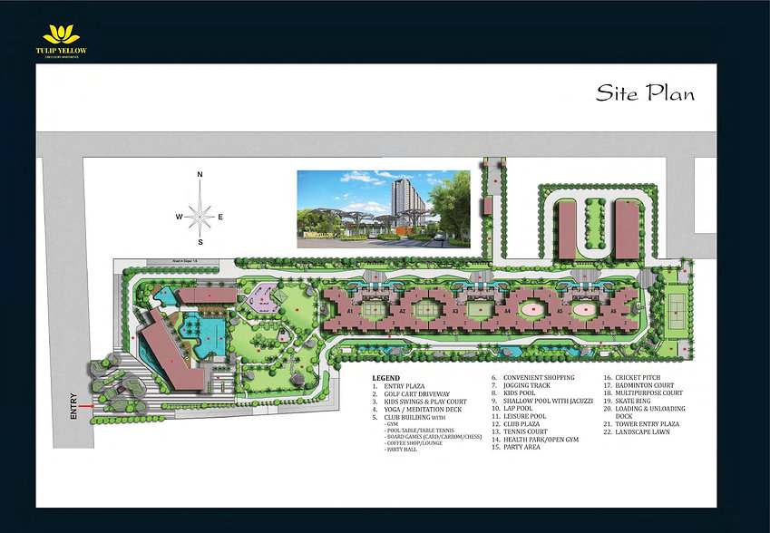 Tulip Yellow Site Plan
