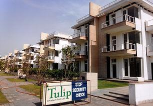 Tulip Ivory | 4-bhk-residential-property-gurgaon .jpg