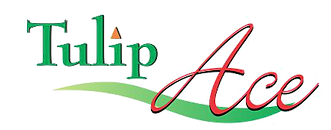 Tulip-Ace-logo |Top real estate developers in gurgaon.png