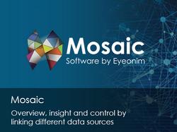 Mosaic_EN