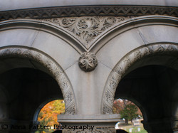Oakwood arches
