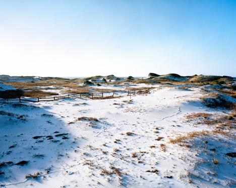 Deer Lake Dunes 2 8x10.jpg